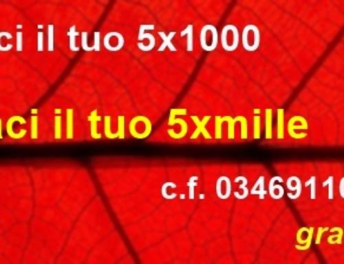 Codice Fiscale 03469110377