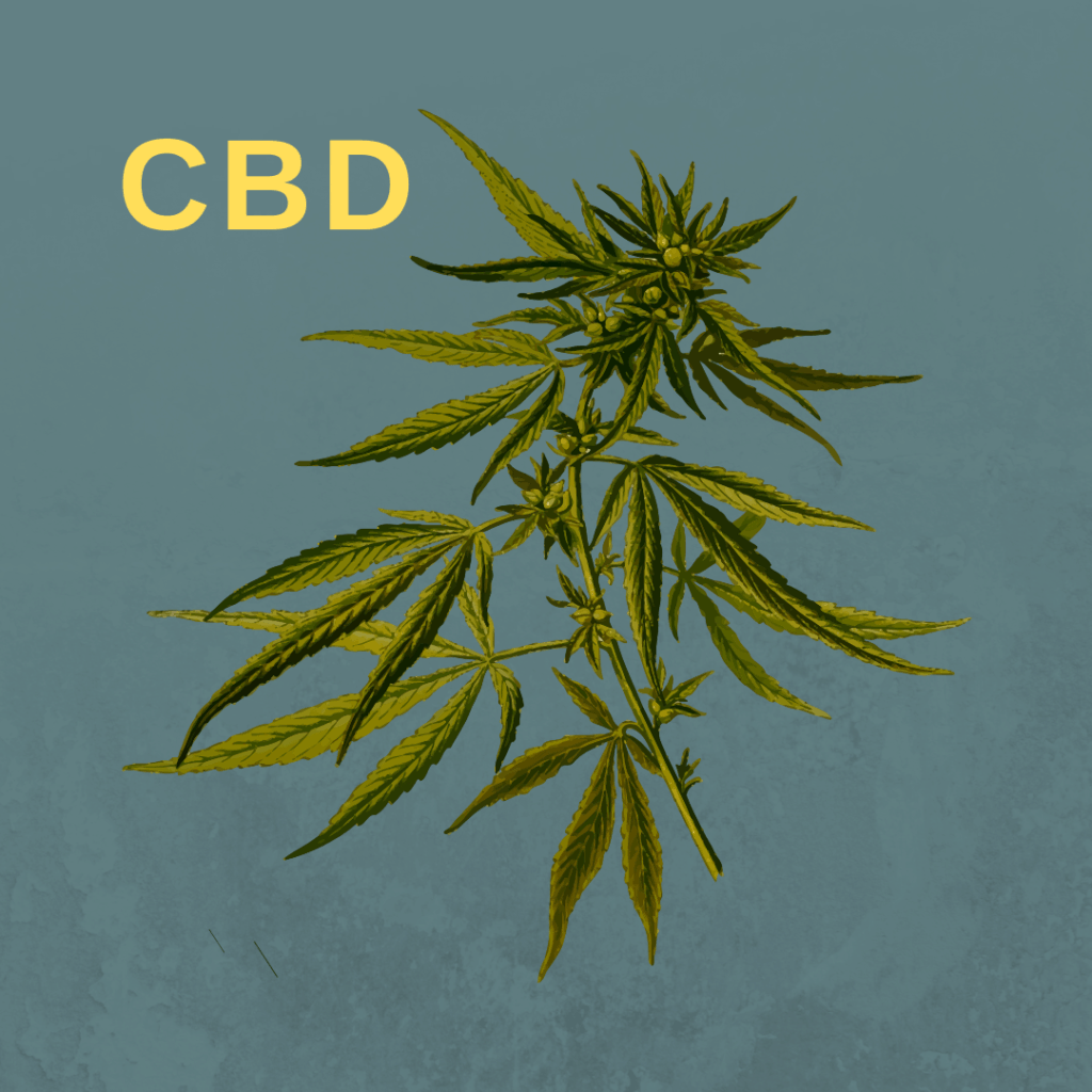 "CBD o cannabis ""light"""